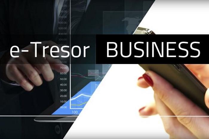 Bild von e-Tresor BUSINESS Paket - 1 Jahr